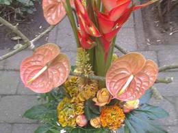 ellen-deelen-natuurlijke-bloem-creaties-baliestuk-met-heliconia