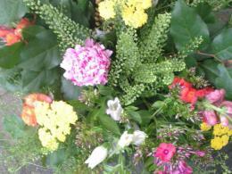 Ellen Deelen natuurlijke Bloem - creaties boeket gemengde seizoensbloemen vanaf €15.00_546x800