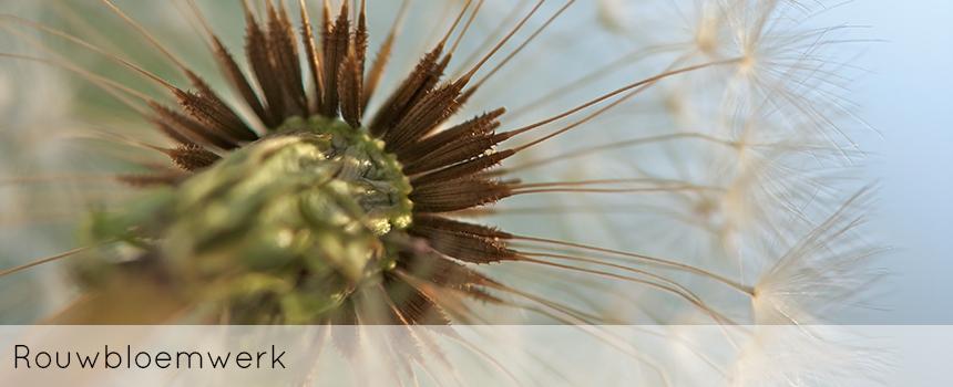 ellen-deelen-natuurlijke-bloem-creaties-achtergrond-rouwbloemwerk-header